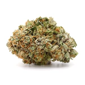 Buy Sunset Sherbert Weed Strain