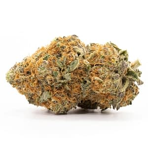 Buy Purple Haze Weed Strain